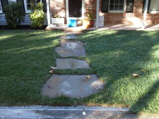 Landscaped sod steppers